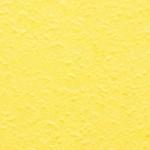 ES 8297 DM Canary